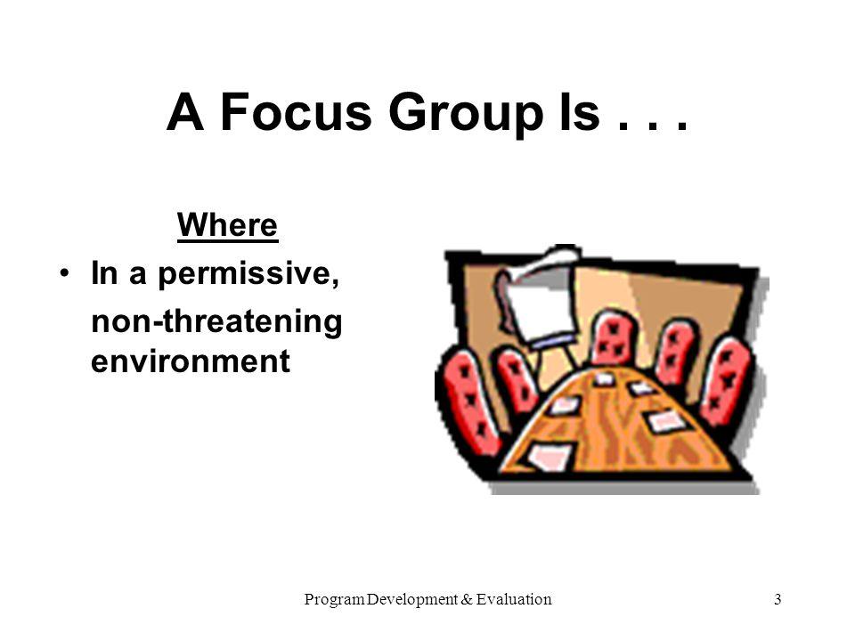 Program Development & Evaluation3 A Focus Group Is...