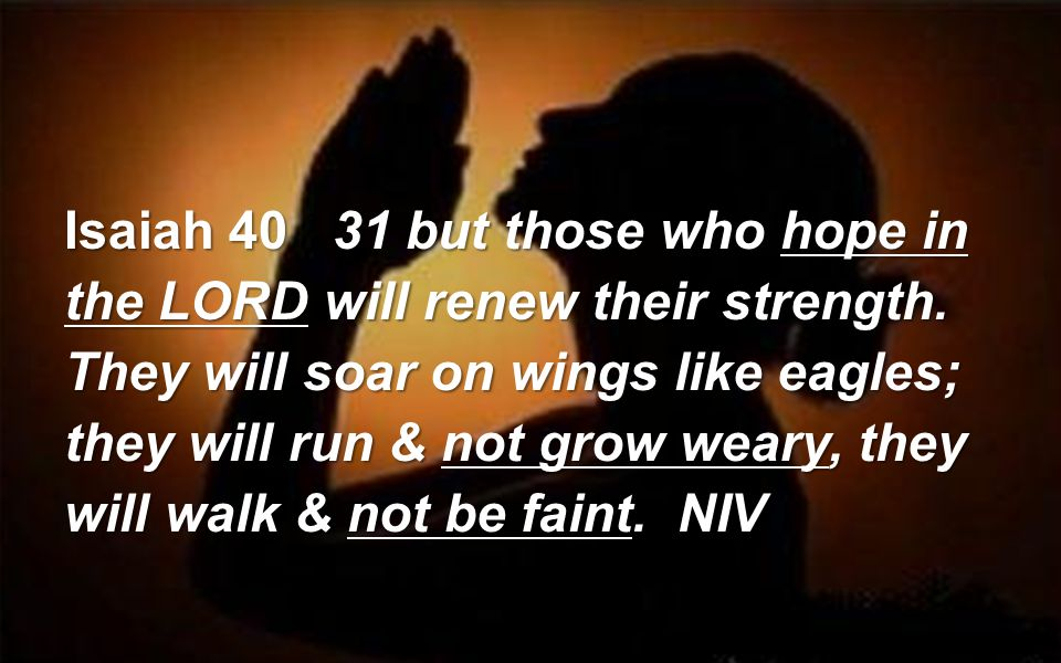Isaiah but those who hope in the LORD will renew their strength.