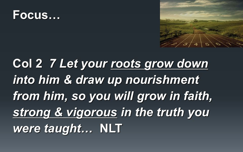 Focus… Col 2 7 Let your roots grow down into him & draw up nourishment from him, so you will grow in faith, strong & vigorous in the truth you were taught… NLT