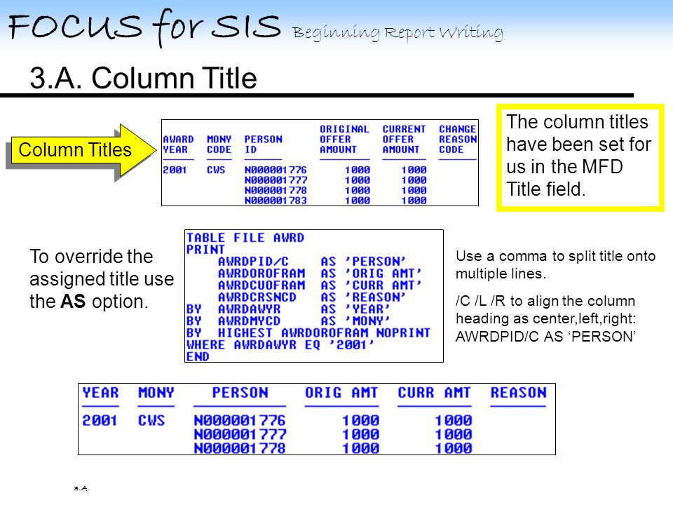 3. Formatting A.Column Title B.Heading C.Footing D.Separations E.Fields 3.