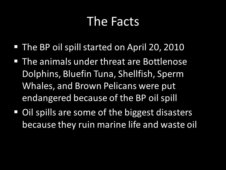 The Facts  The BP oil spill started on April 20, 2010  The animals under threat are Bottlenose Dolphins, Bluefin Tuna, Shellfish, Sperm Whales, and