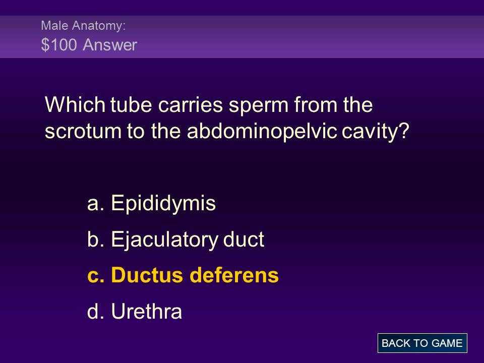 Female Anatomy: $200 Question Where are fimbriae found.