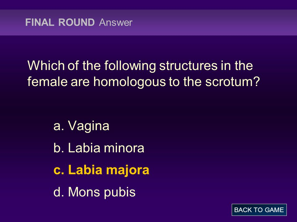 FINAL ROUND Answer Which of the following structures in the female are homologous to the scrotum? a. Vagina b. Labia minora c. Labia majora d. Mons pu