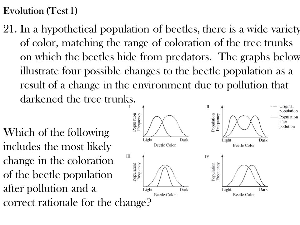 21.In a hypothetical population of beetles, there is a wide variety of color, matching the range of coloration of the tree trunks on which the beetles