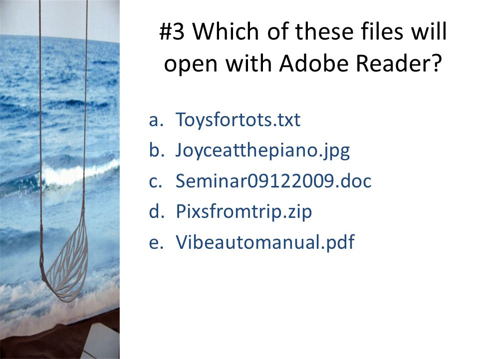 #3 Which of these files will open with Adobe Reader? a.Toysfortots.txt b.Joyceatthepiano.jpg c.Seminar09122009.doc d.Pixsfromtrip.zip e.Vibeautomanual
