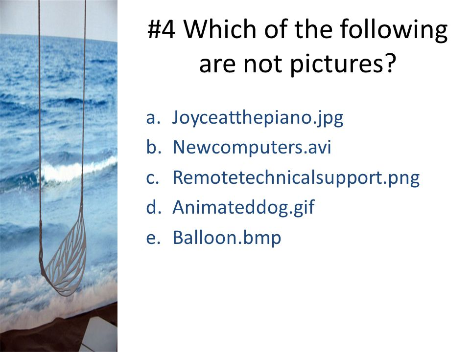 #4 Which of the following are not pictures? a.Joyceatthepiano.jpg b.Newcomputers.avi c.Remotetechnicalsupport.png d.Animateddog.gif e.Balloon.bmp
