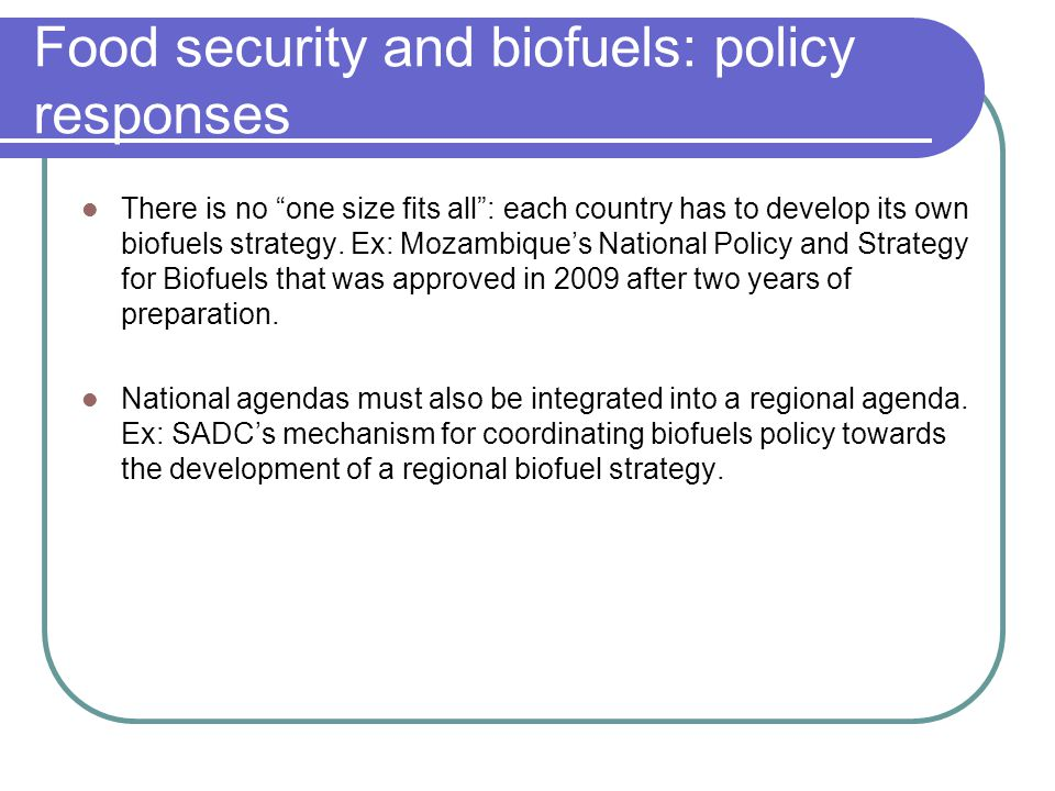 "Food security and biofuels: policy responses There is no ""one size fits all"": each country has to develop its own biofuels strategy. Ex: Mozambique's"