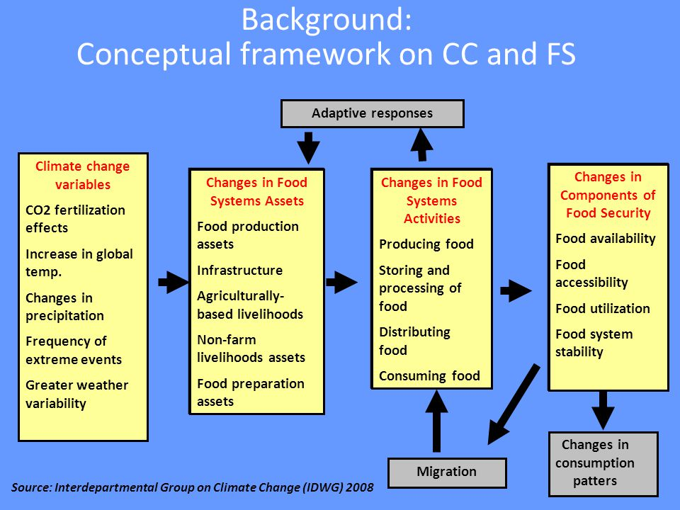 Background on analysis of vulnerability to food insecurity Improve targeting and design of interventions Initial steps Conceptual and methodological developments Country application