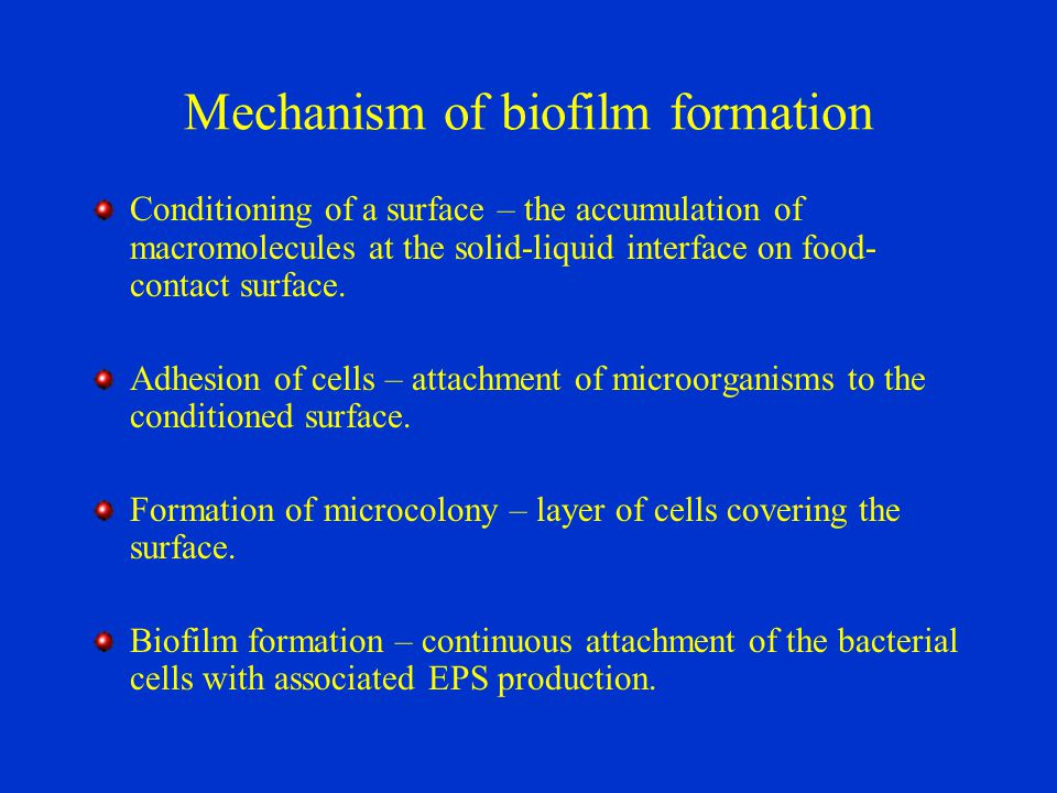 Mechanism of biofilm formation Conditioning of a surface – the accumulation of macromolecules at the solid-liquid interface on food- contact surface.