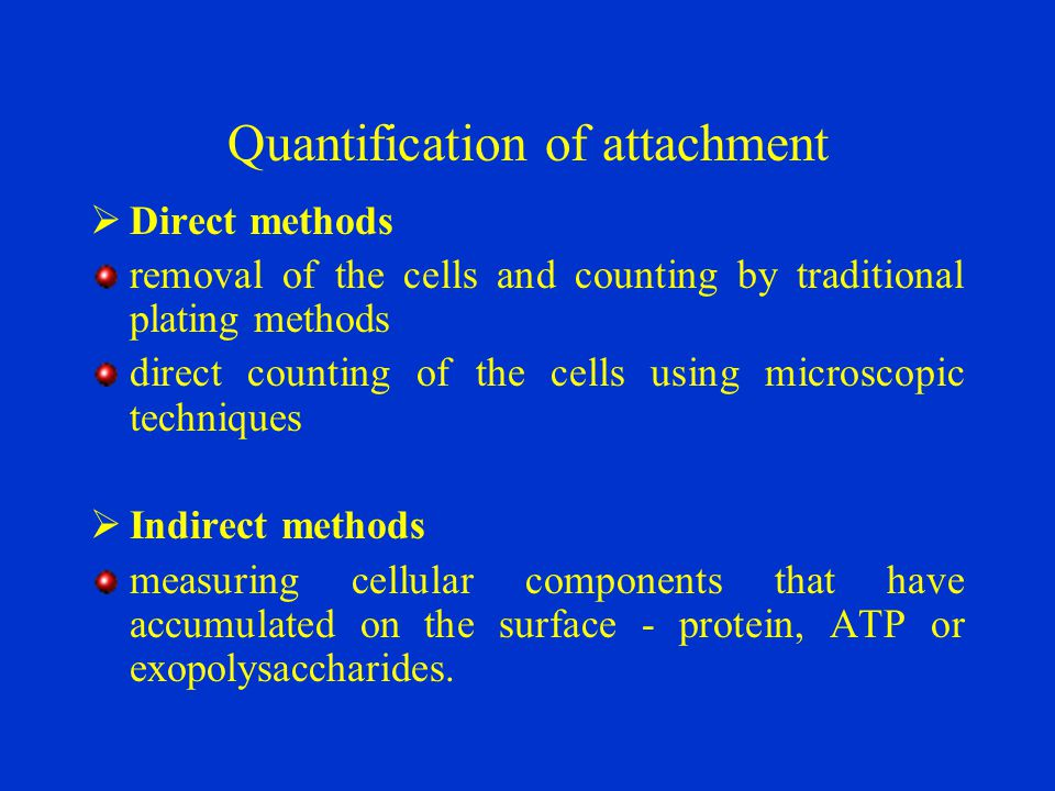 Quantification of attachment  Direct methods removal of the cells and counting by traditional plating methods direct counting of the cells using micr