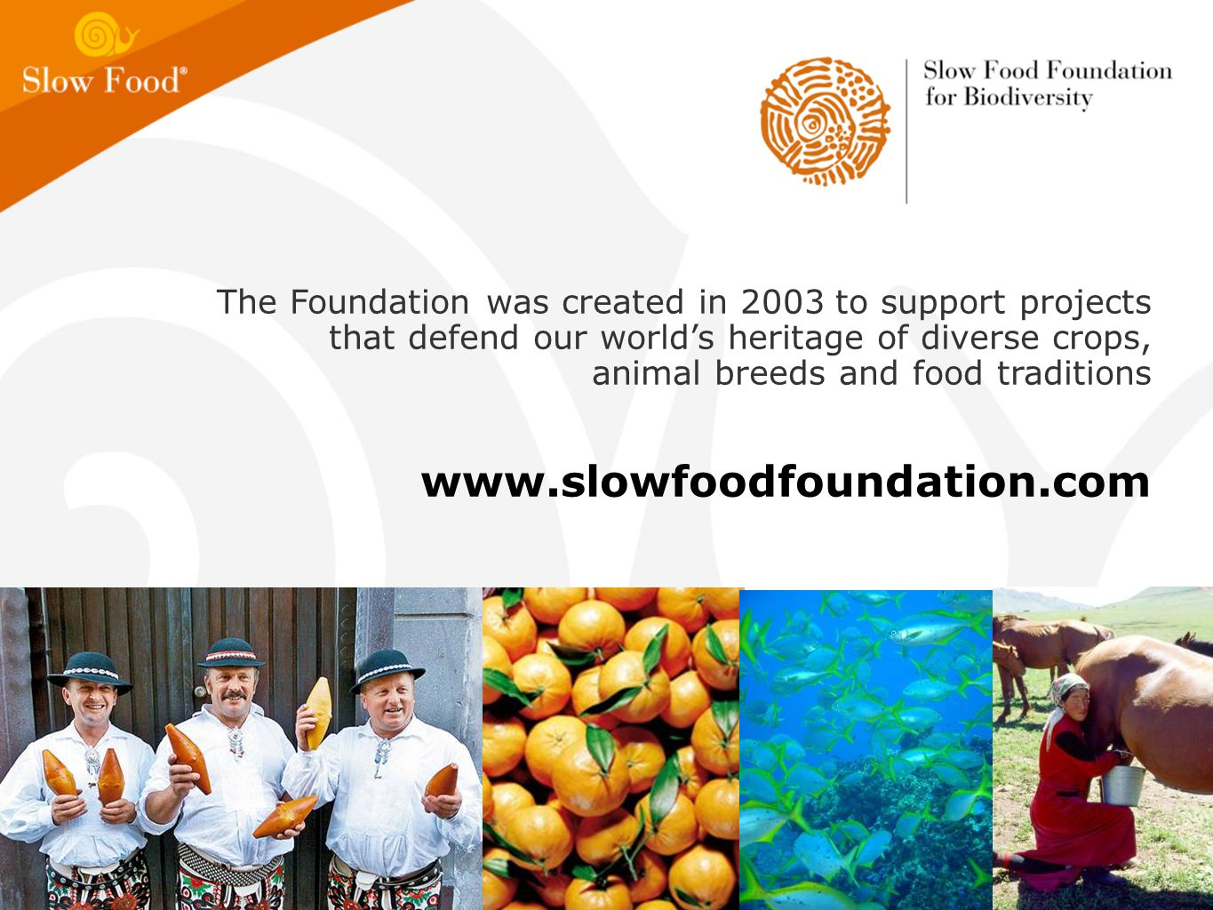 The Foundation was created in 2003 to support projects that defend our world's heritage of diverse crops, animal breeds and food traditions