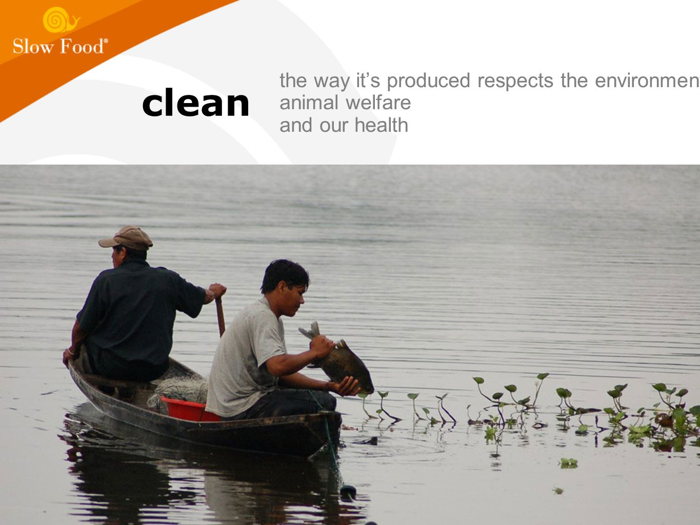 clean the way it's produced respects the environment, animal welfare and our health