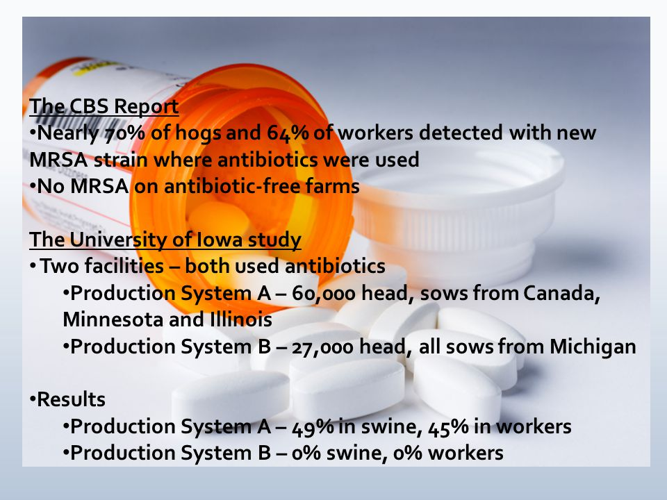 The CBS Report Nearly 70% of hogs and 64% of workers detected with new MRSA strain where antibiotics were used No MRSA on antibiotic-free farms The University of Iowa study Two facilities – both used antibiotics Production System A – 60,000 head, sows from Canada, Minnesota and Illinois Production System B – 27,000 head, all sows from Michigan Results Production System A – 49% in swine, 45% in workers Production System B – 0% swine, 0% workers