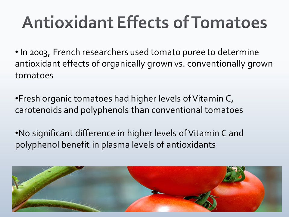 In 2003, French researchers used tomato puree to determine antioxidant effects of organically grown vs.