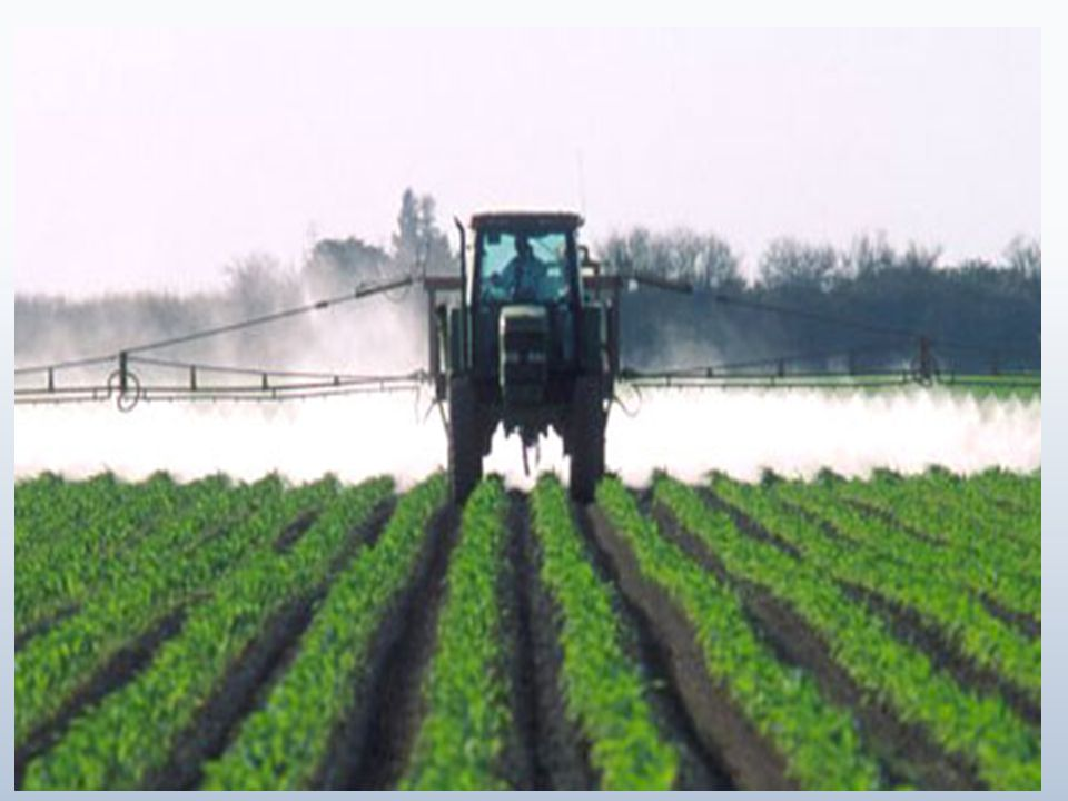 Approximately 70% of consumers purchase organic foods to avoid pesticides The USDA prohibits some pesticides in organic food production, but allows others like: Water disinfectants of calcium and sodium hypochlorite and copper sulfate Insecticides of boric acid, lime sulfur, copper sulfate and oils