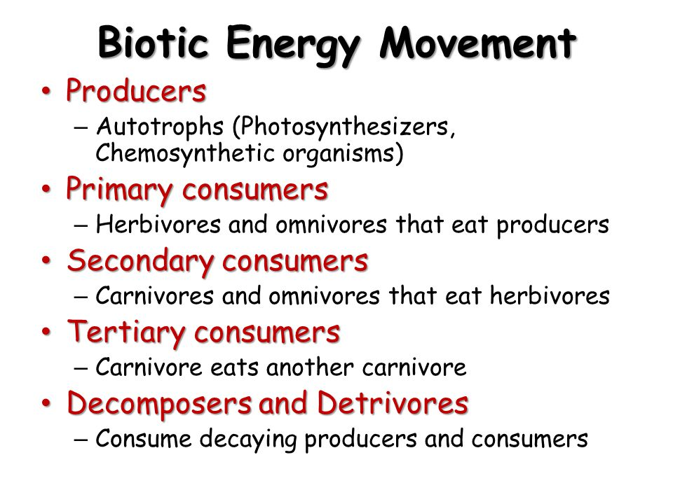 Biotic Energy Movement Producers Producers – Autotrophs (Photosynthesizers, Chemosynthetic organisms) Primary consumers Primary consumers – Herbivores