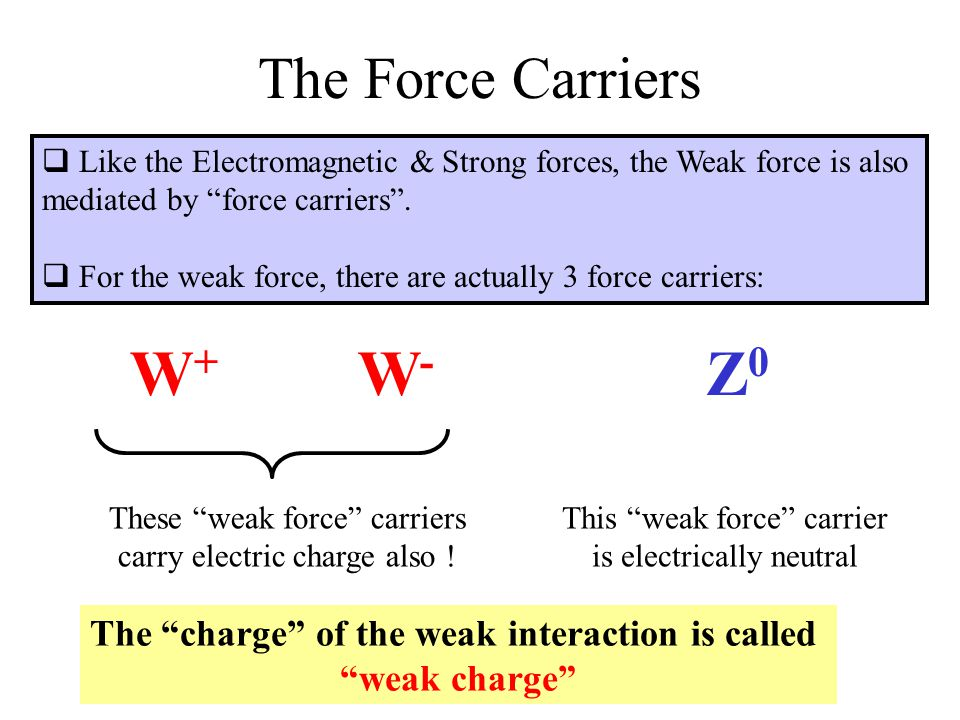 Weak Charge of Quarks & Leptons Both quarks & leptons carry weak charge  Both quarks & leptons couple to the W and Z force carriers  Since the W's have a charge of +1 and –1 they cause a charge- changing interaction.