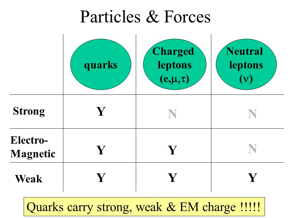 Particles & Forces quarks Charged leptons (e,  ) Neutral leptons ( ) Strong Electro- Magnetic Weak Y Y Y Y Y Y NN N Quarks carry strong, weak & EM charge !!!!!