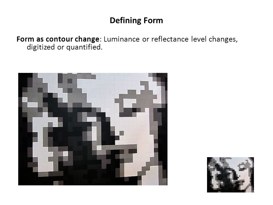 Defining Form Form as contour change: Luminance or reflectance level changes, digitized or quantified.