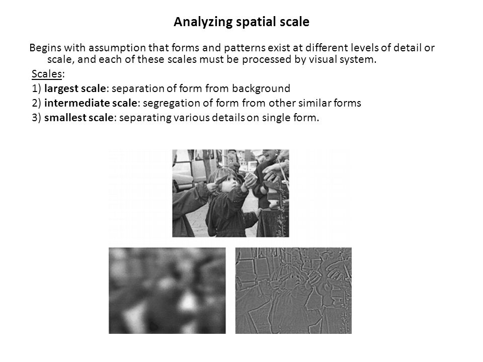 Analyzing spatial scale Begins with assumption that forms and patterns exist at different levels of detail or scale, and each of these scales must be
