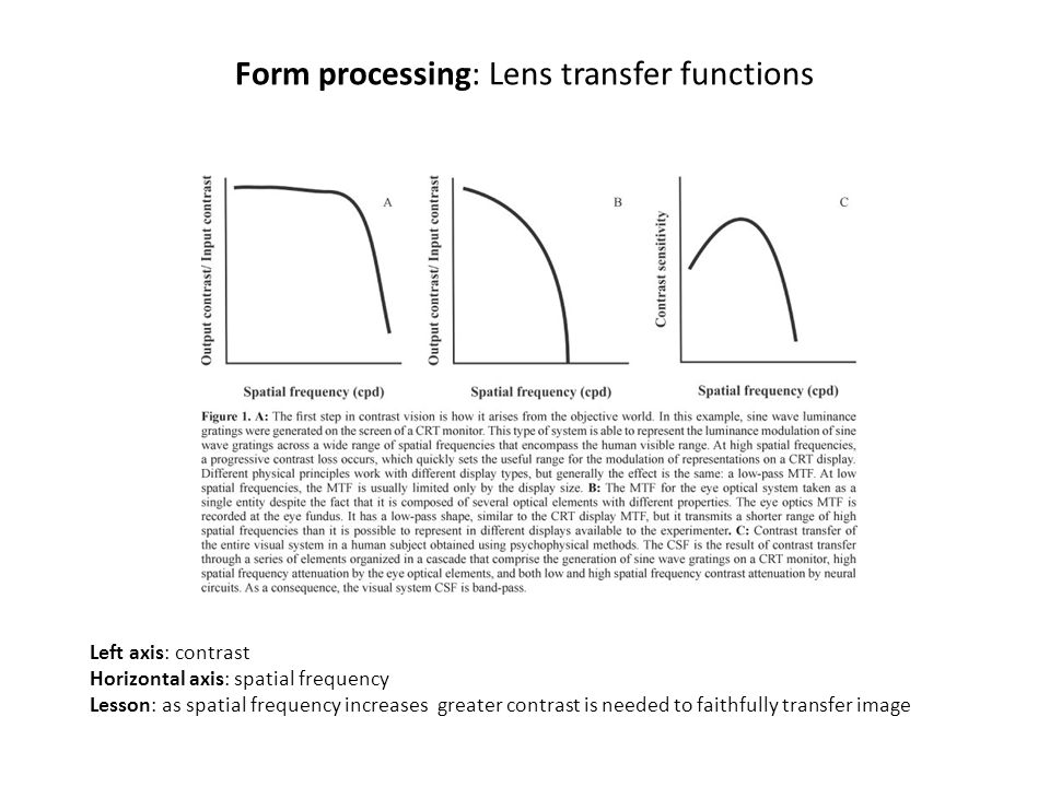 Form processing: Lens transfer functions Left axis: contrast Horizontal axis: spatial frequency Lesson: as spatial frequency increases greater contras
