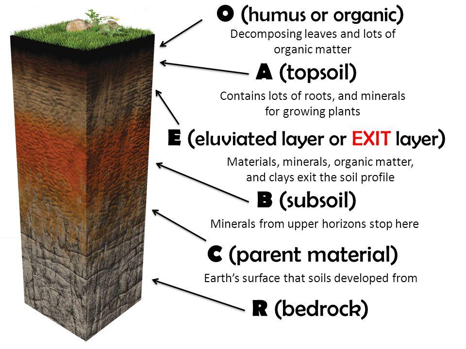 Top Soil Subsoil Parent Material