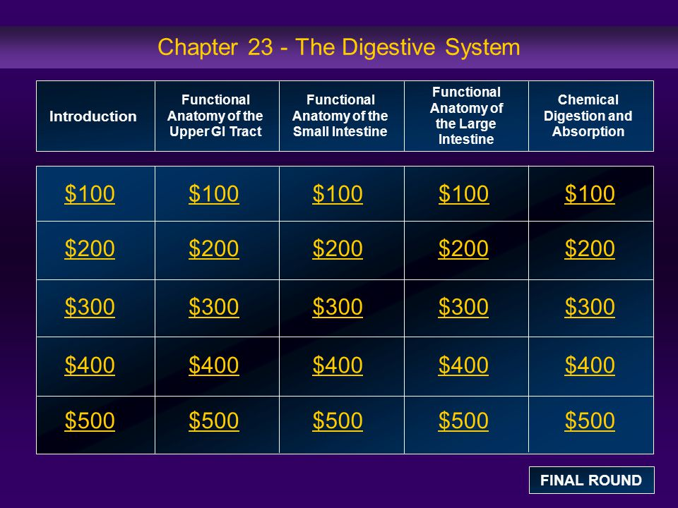 Functional Anatomy of the Large Intestine: $100 Question Which of the following is not part of the large intestine.