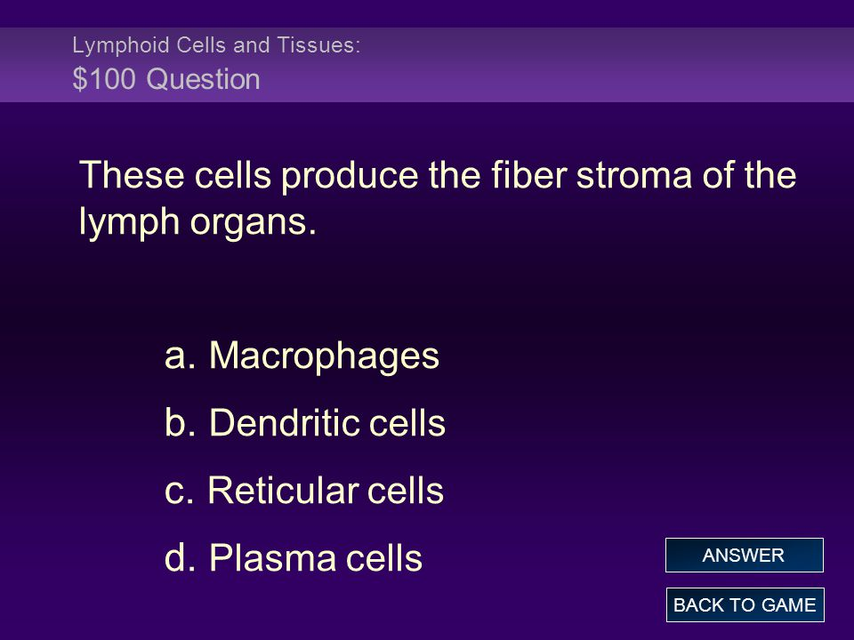 Lymphoid Cells and Tissues: $100 Question These cells produce the fiber stroma of the lymph organs. a. Macrophages b. Dendritic cells c. Reticular cel