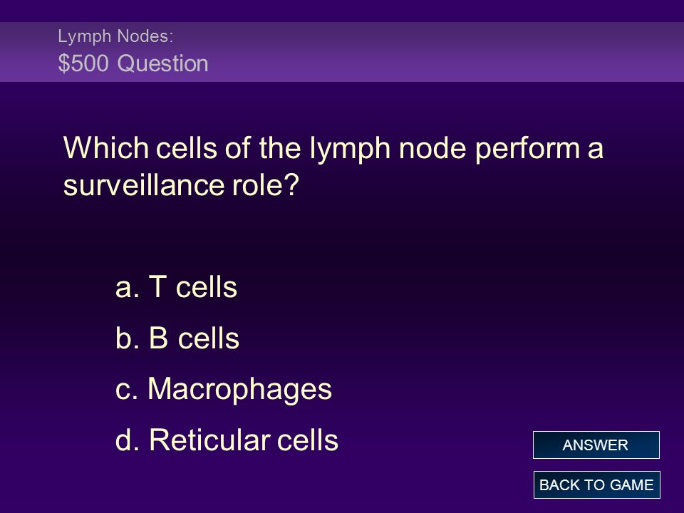 Lymph Nodes: $500 Question Which cells of the lymph node perform a surveillance role? a. T cells b. B cells c. Macrophages d. Reticular cells BACK TO