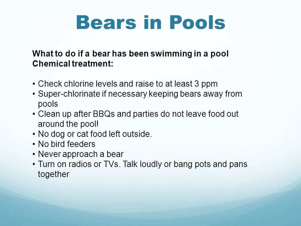 Bears in Pools What to do if a bear has been swimming in a pool Chemical treatment: Check chlorine levels and raise to at least 3 ppm Super-chlorinate if necessary keeping bears away from pools Clean up after BBQs and parties do not leave food out around the pool.