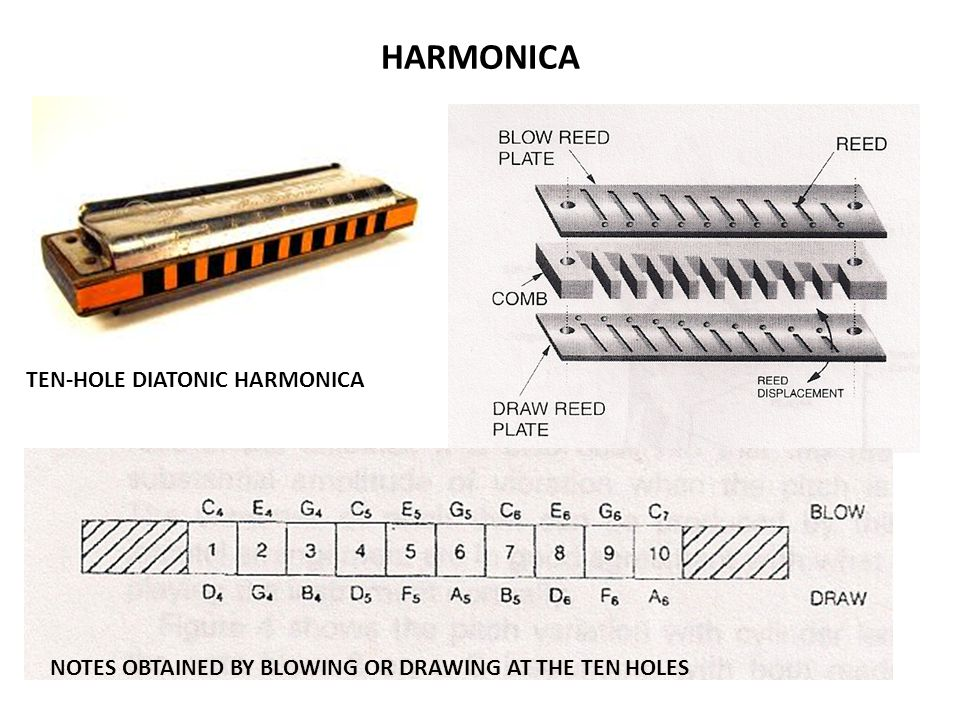 HARMONICA TEN-HOLE DIATONIC HARMONICA NOTES OBTAINED BY BLOWING OR DRAWING AT THE TEN HOLES