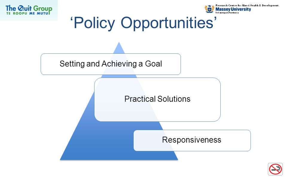 'Policy Opportunities' Setting and Achieving a Goal Practical Solutions Responsiveness