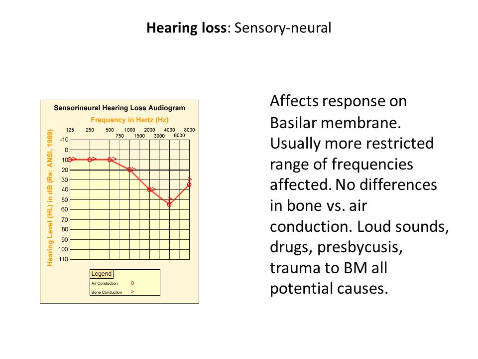 Hearing loss: treatments Hearing aids: electronically amplify incoming auditory signal, usually boosts speech range more relative to other frequencies Cochlear implants: electrodes implanted direction in cochlea to directly stimulate ANF.