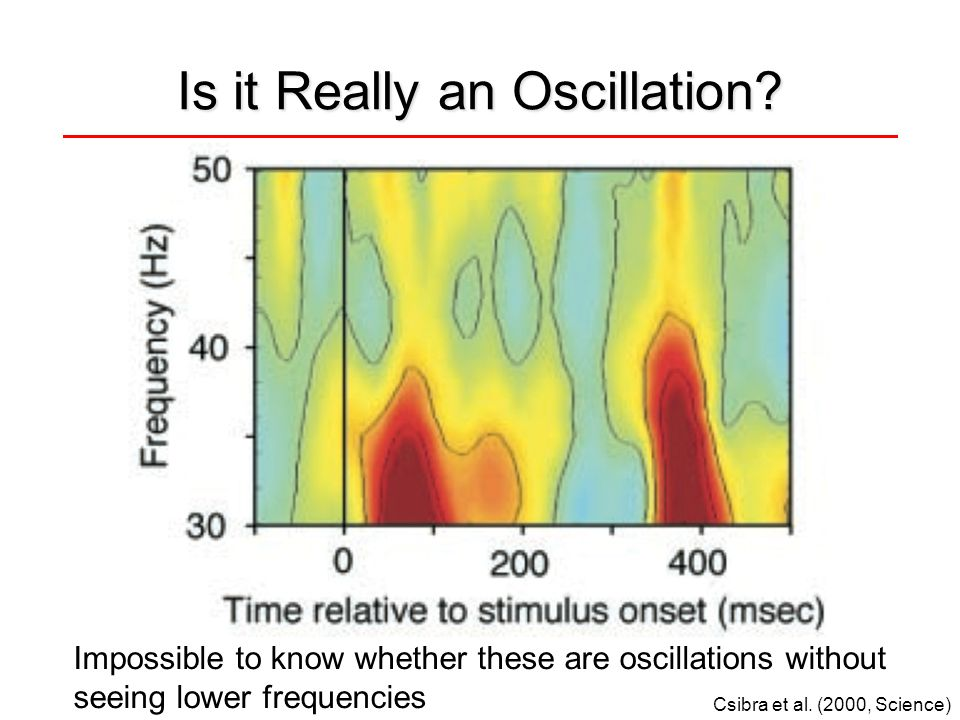 Is it Really an Oscillation? Csibra et al. (2000, Science) Impossible to know whether these are oscillations without seeing lower frequencies