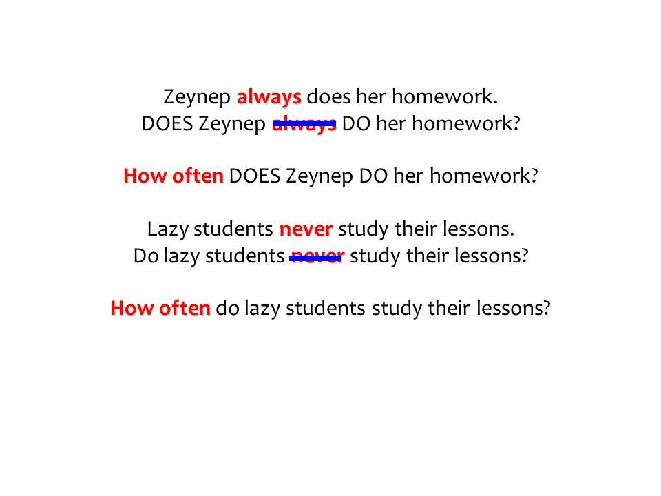 Zeynep a aa always does her homework. DOES Zeynep a aa always DO her homework? How often DOES Zeynep DO her homework? Lazy students n nn never study t