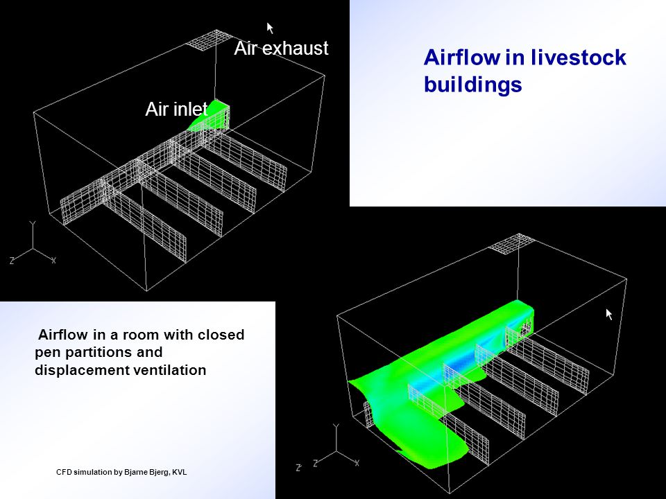 Airflow in a room with closed pen partitions and displacement ventilation Air inlet Air exhaust CFD simulation by Bjarne Bjerg, KVL Airflow in livestock buildings