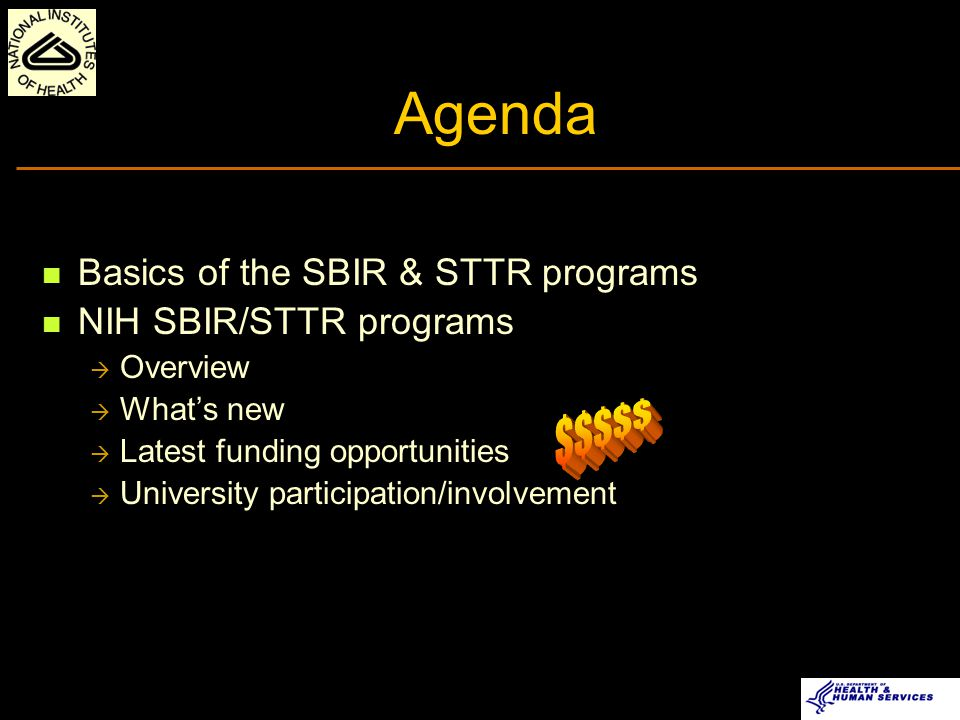 Agenda Basics of the SBIR & STTR programs NIH SBIR/STTR programs  Overview  What's new  Latest funding opportunities  University participation/involvement