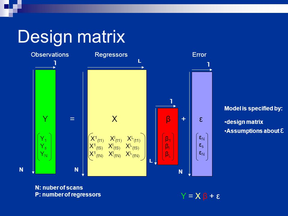 Design matrix Regressors β1 β1 β2β2 ObservationsError Y = X β + ε N N N l L l l L N: nuber of scans P: number of regressors Y = X β + ε Model is specified by: design matrix Assumptions about ε Y1YsYNY1YsYN X 1 (t1) X l (t1) X L (t1) X 1 (tS) X l (tS) X L (tS) X 1 (tN) X l (tN) X L (tN) β1βlβLβ1βlβL εNεsεNεNεsεN
