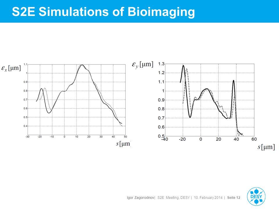 Igor Zagorodnov| S2E Meeting, DESY | 10. February 2014 | Seite 13 S2E Simulations of Bioimaging