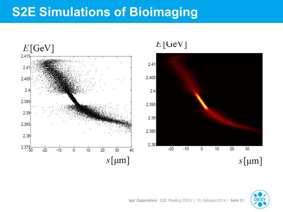 Igor Zagorodnov| S2E Meeting, DESY | 10. February 2014 | Seite 14 S2E Simulations of Bioimaging