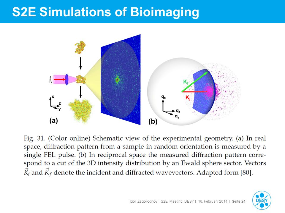 Igor Zagorodnov| S2E Meeting, DESY | 10. February 2014 | Seite 24 S2E Simulations of Bioimaging
