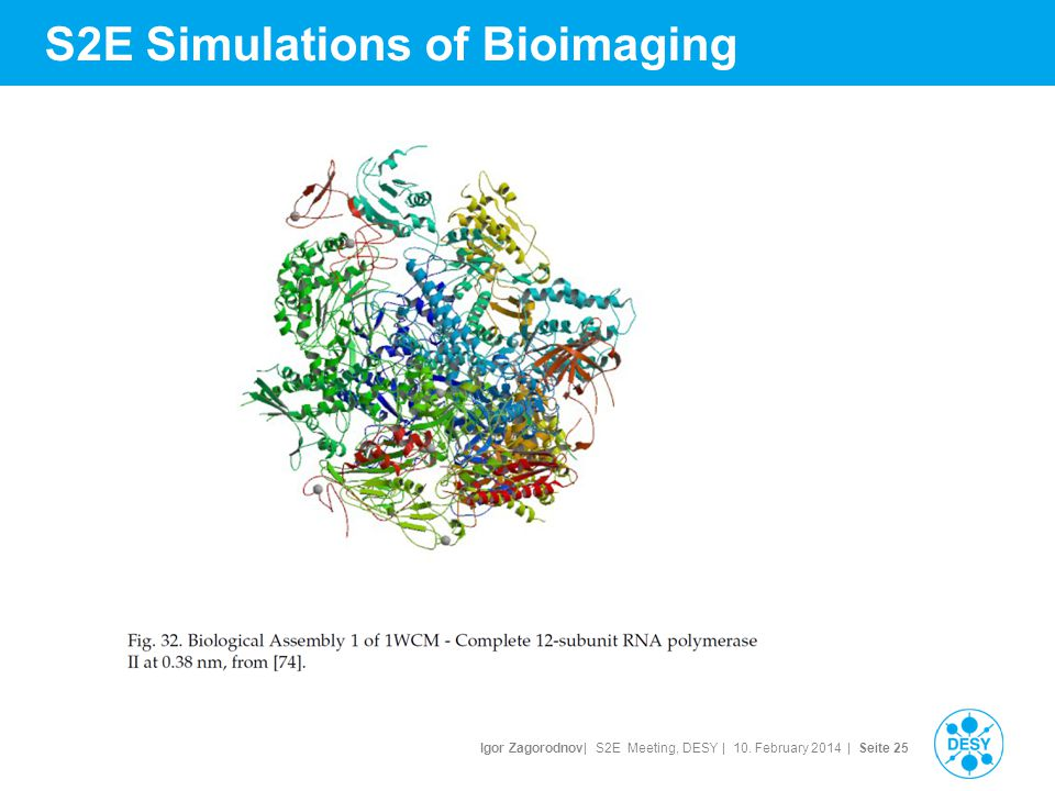 Igor Zagorodnov| S2E Meeting, DESY | 10. February 2014 | Seite 25 S2E Simulations of Bioimaging
