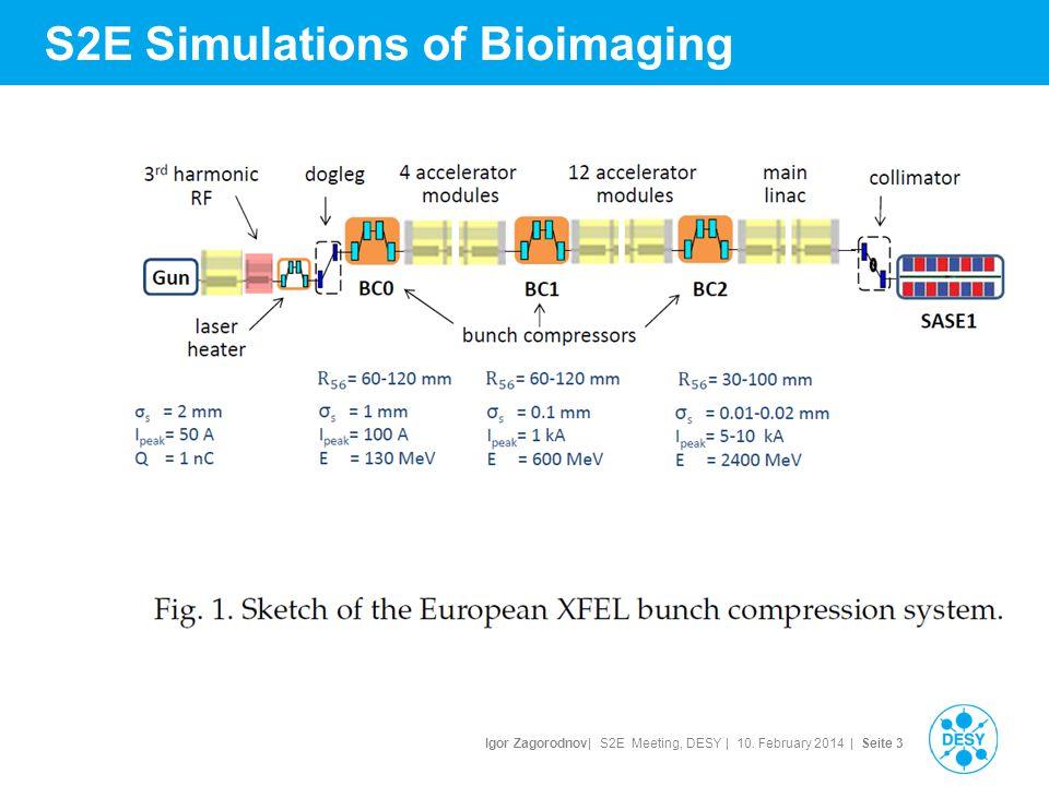 Igor Zagorodnov| S2E Meeting, DESY | 10. February 2014 | Seite 4 S2E Simulations of Bioimaging