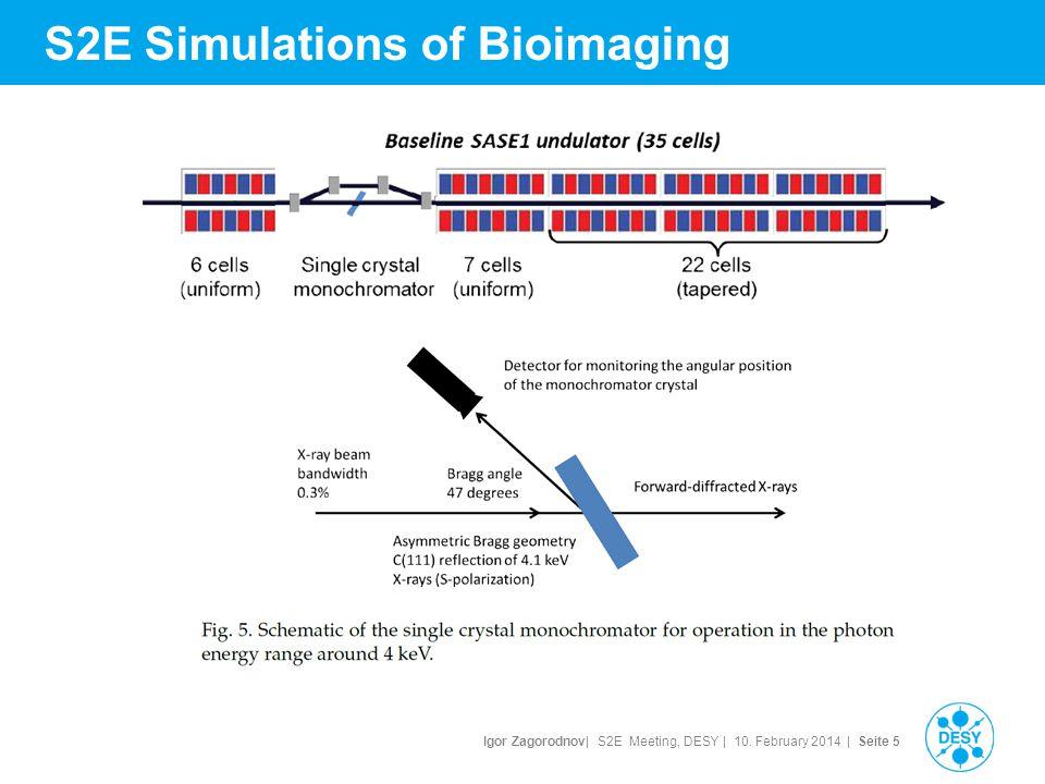 Igor Zagorodnov| S2E Meeting, DESY | 10. February 2014 | Seite 6 S2E Simulations of Bioimaging