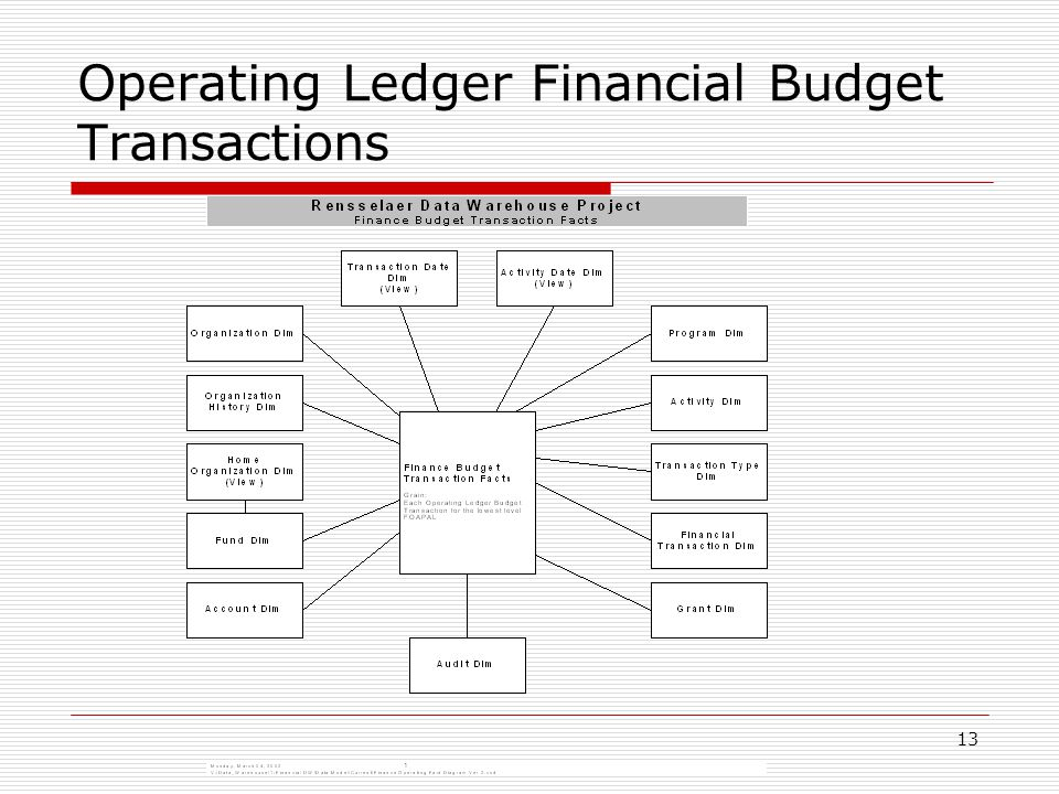 13 Operating Ledger Financial Budget Transactions