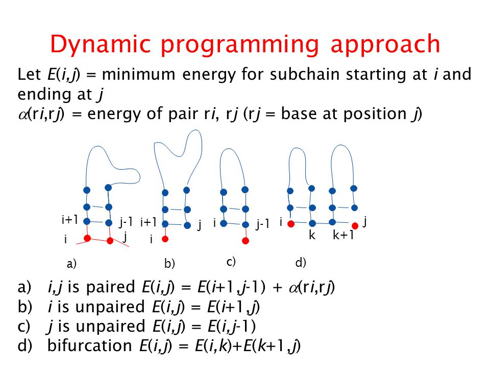 Dynamic programming approach a) i,j is paired E(i,j) = E(i+1,j-1) +  (ri,rj) b) i is unpaired E(i,j) = E(i+1,j) c) j is unpaired E(i,j) = E(i,j-1) d) bifurcation E(i,j) = E(i,k)+E(k+1,j) i+1 j-1 i+1 j j i j-1 i j i i k k+1 a)b) c) d) Let E(i,j) = minimum energy for subchain starting at i and ending at j  (ri,rj) = energy of pair ri, rj (rj = base at position j)