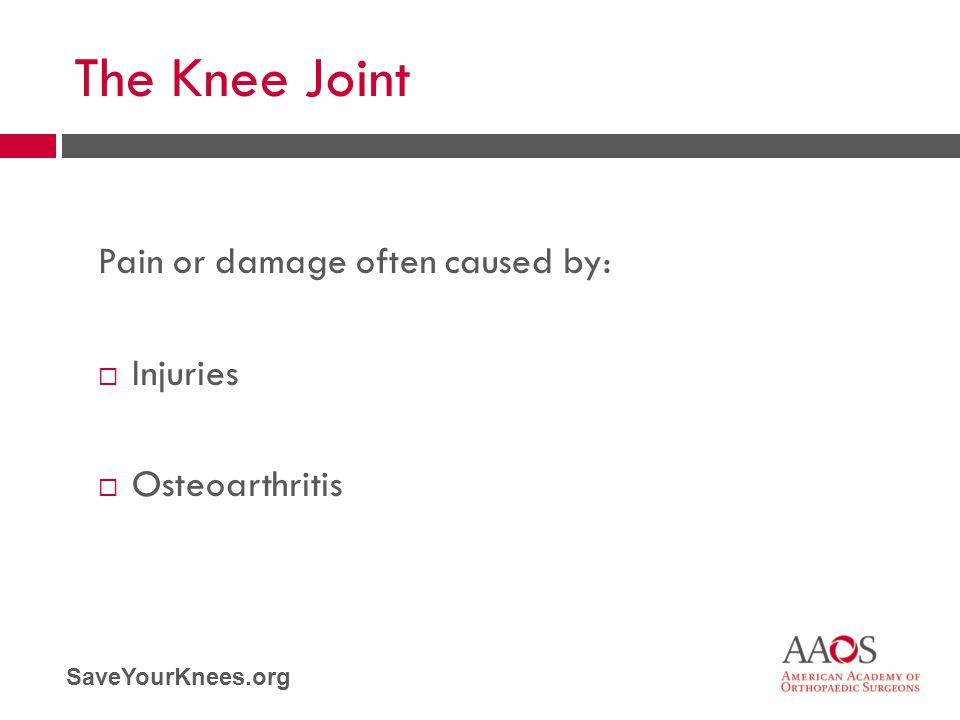 SaveYourKnees.org The Knee Joint Pain or damage often caused by:  Injuries  Osteoarthritis