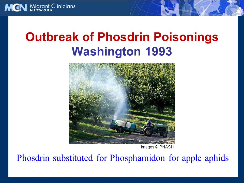 Outbreak of Phosdrin Poisonings Washington 1993 Phosdrin substituted for Phosphamidon for apple aphids Images © PNASH