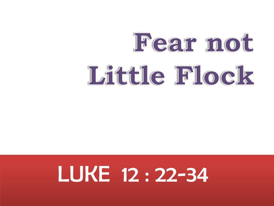 LUKE 12 : 22-34