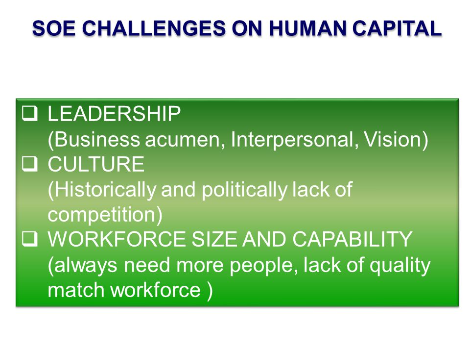 SOE CHALLENGES ON HUMAN CAPITAL  LEADERSHIP (Business acumen, Interpersonal, Vision)  CULTURE (Historically and politically lack of competition)  WORKFORCE SIZE AND CAPABILITY (always need more people, lack of quality match workforce )  LEADERSHIP (Business acumen, Interpersonal, Vision)  CULTURE (Historically and politically lack of competition)  WORKFORCE SIZE AND CAPABILITY (always need more people, lack of quality match workforce )